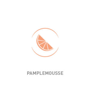 icone-gout-pamplemousse